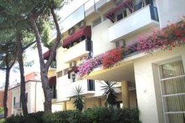 Hotel New Primula 3* Rimini