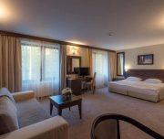 Hotel Lion 5